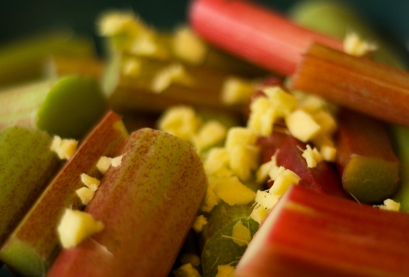 Roasted rhubarb with Ginger and vanilla
